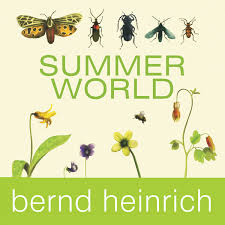 Book_Heinrich_Summer-World