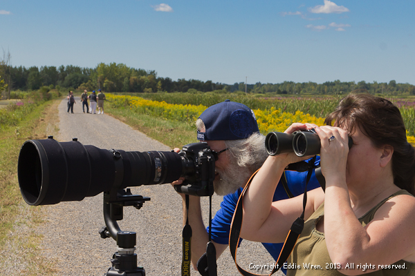 WWP Group hikes, events and photos