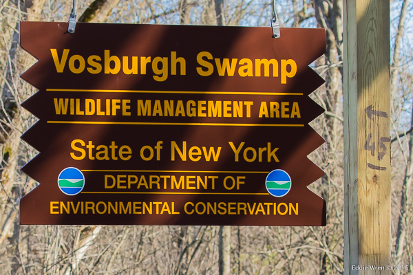 The NY DEC sign at the entrance to Vosburgh Swamp